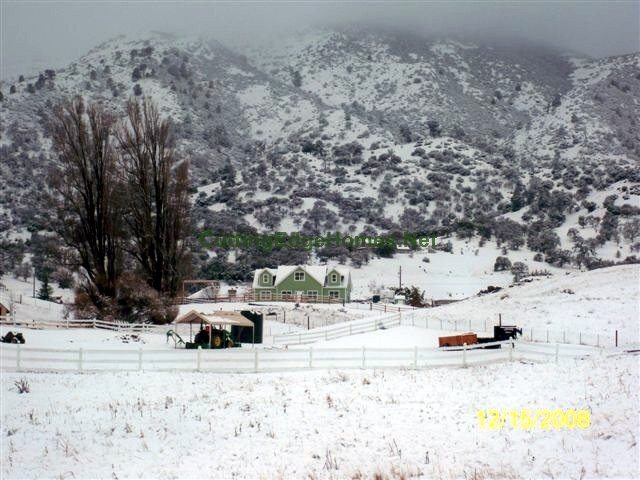 dec 2008 snow 032