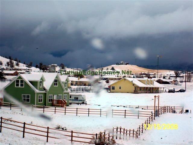 dec 2008 snow 038