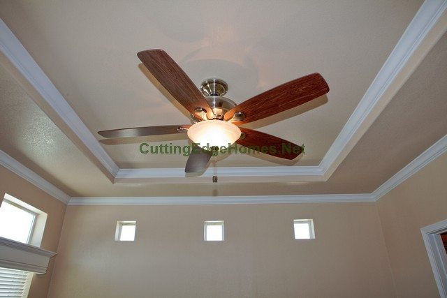 Fan with Trey Ceiling